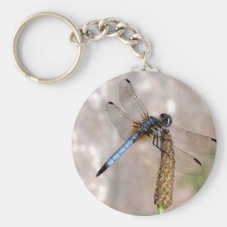 Dragonfly! Basic Round Button Key Ring