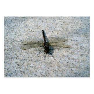 Dragonfly Large Business Cards (Pack Of 100)