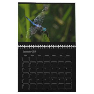 Dragonfly Calendar 2017