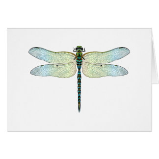 DragonFly Greeting Cards