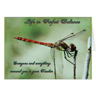 Dragonfly Card