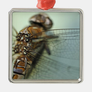 Dragonfly close-up christmas ornament