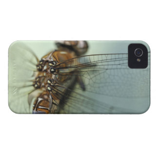Dragonfly close-up iPhone 4 case