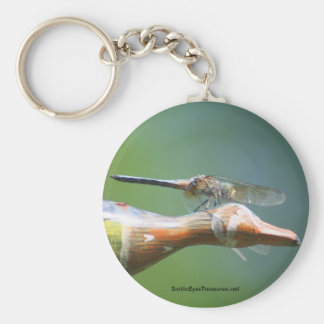 Dragonfly Co Pilot Nature Photo Keychain Keyring