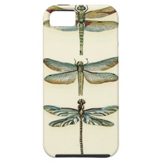 Dragonfly Collection by Chariklia Zarris iPhone 5 Cases