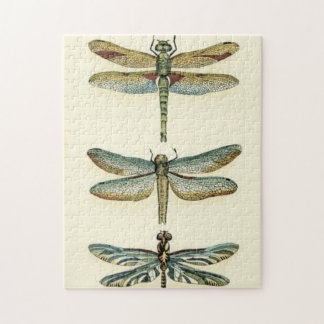 Dragonfly Collection by Chariklia Zarris Jigsaw Puzzle