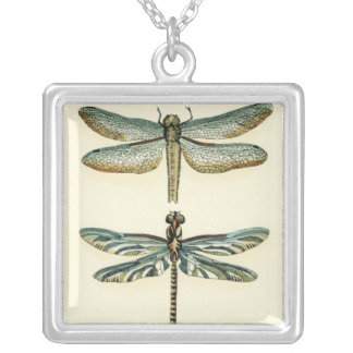 Dragonfly Collection by Chariklia Zarris Silver Plated Necklace