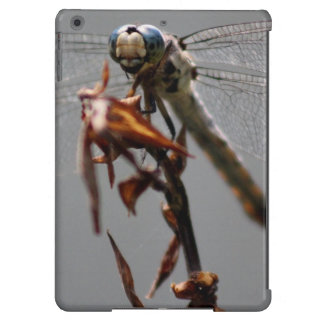 Dragonfly Covers