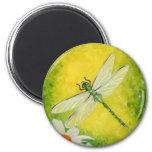 Dragonfly Daisy Magnet