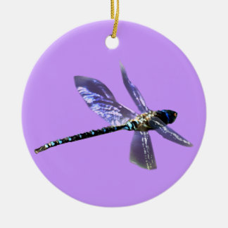 Dragonfly Damsel Fly Insect-lovers Gift Series Round Ceramic Decoration