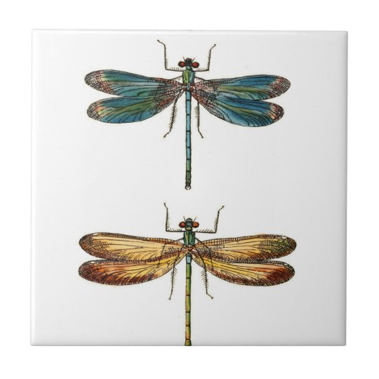 Dragonfly Duo Ceramics Tile
