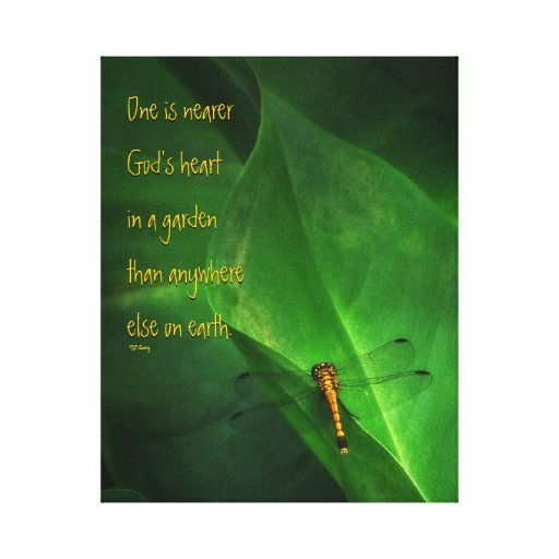 Dragonfly Garden Quotation Stretched Canvas Prints