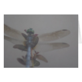 Dragonfly Illusionist Greeting Card