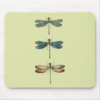 Dragonfly Illustrations Mouse Pad