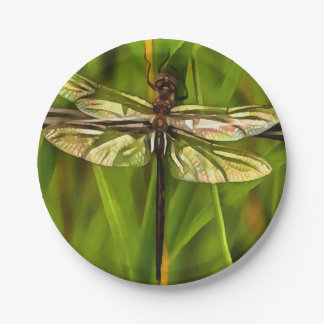Dragonfly In Brown And Yellow Paper Plate