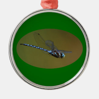 dragonfly in flight Silver-Colored round decoration