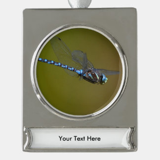 dragonfly in flight silver plated banner ornament