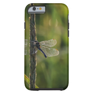 Dragonfly In Grass Nature Inspired iPhone6/6s Case