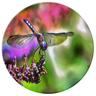 Dragonfly In Green and Blue Plate