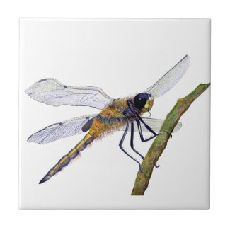 Dragonfly Insect Hand Painted Watercolor Artwork Tile
