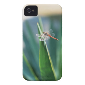Dragonfly iPhone 4 Case-Mate Case