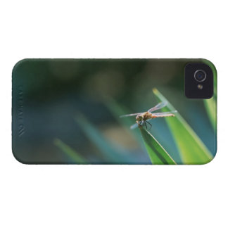 Dragonfly iPhone 4 Cover