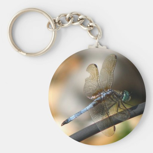 Dragonfly Key Chains