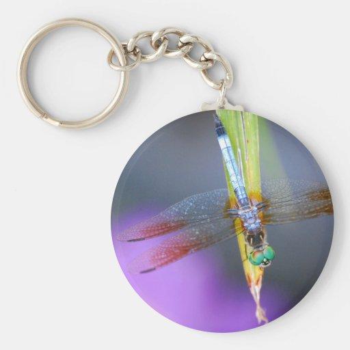 Dragonfly - keychain