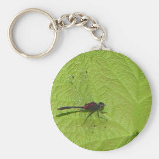 Dragonfly Keyring Basic Round Button Key Ring