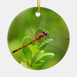 Dragonfly Landed on Green Garden Plant Round Ceramic Decoration