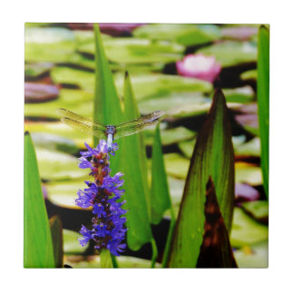 Dragonfly lotus and purple flower small square tile
