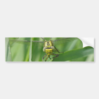 Dragonfly Macro Photo Bumper Sticker