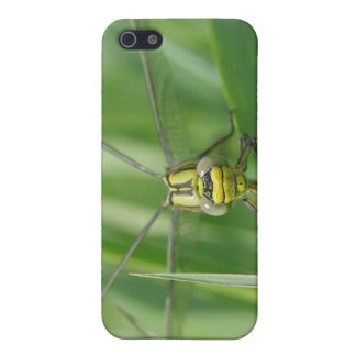 Dragonfly Macro Photo iPhone 5 Cover