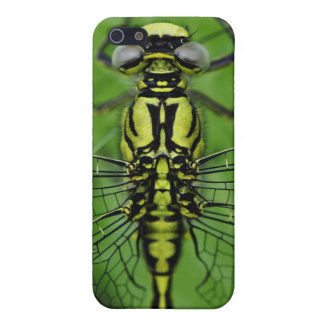 Dragonfly Macro Photo iPhone 5 Case