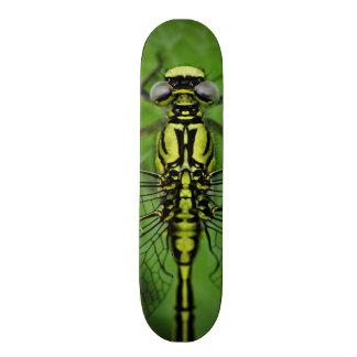 Dragonfly Macro Photo Custom Skate Board