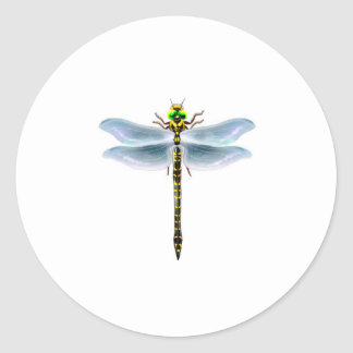 dragonfly merchandise classic round sticker