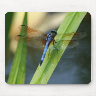 Dragonfly Mouse Mat