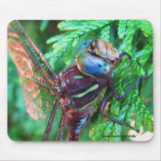 Dragonfly mousepad design