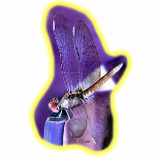 Dragonfly Neg Image 01 Photo Sculpture Decoration