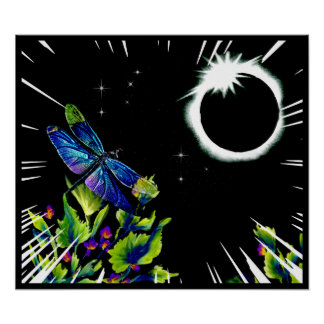 Dragonfly Observes the Total Solar Eclipse 2017 Poster
