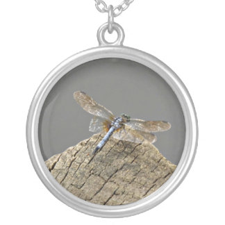 Dragonfly on a dock. round pendant necklace