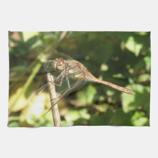 Dragonfly on a Twig Kitchen Towel