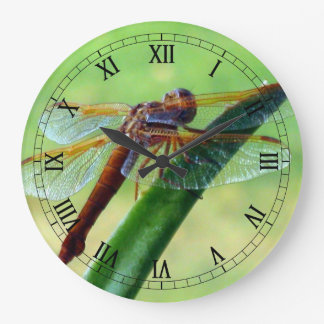 Dragonfly on Aloe Macro Wall Clock