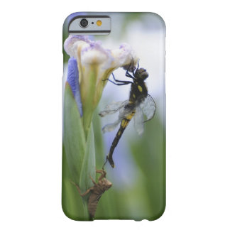 Dragonfly on iris barely there iPhone 6 case
