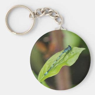 dragonfly on leaf basic round button key ring