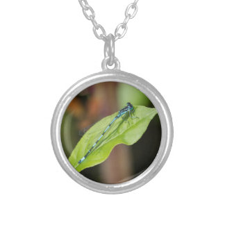 dragonfly on leaf silver plated necklace