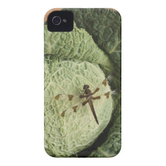 Dragonfly on lettuce iPhone 4 case