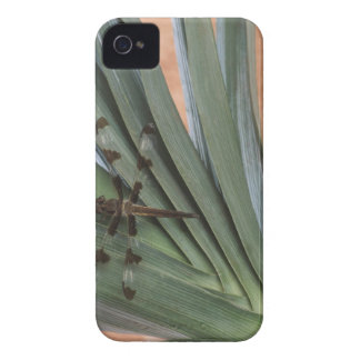 Dragonfly on plant iPhone 4 Case-Mate cases