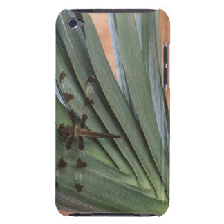 Dragonfly on plant iPod touch cases