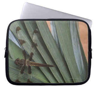 Dragonfly on plant laptop sleeve